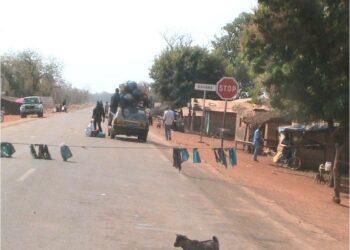 La Guinée a démenti samedi nuit, avoir fermé ses frontières avec la Sierra Leone et le Liberia pour tenter d'enrayer la propagation du virus Ebola qui a déjà tué près de 1.000 personnes dans ces trois pays d'Afrique de l'Ouest.