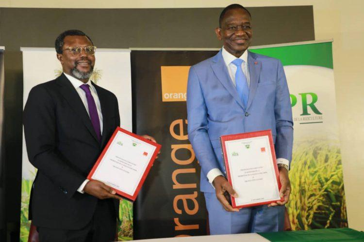 Agriculture : Le ministère de la promotion de la Riziculture et Orange CI signent un protocole d'accord pour booster la chaîne de valeur de riz