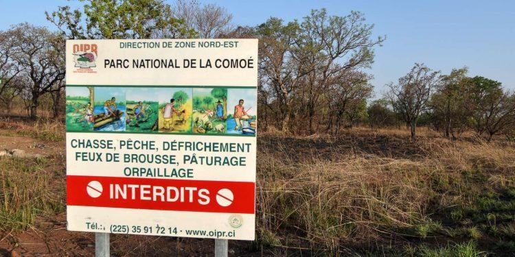 Parc national de la Comoé: frontière poreuse du nord ivoirien, le nouveau nid des djihadistes (une analyse de Philippe Kouhon)