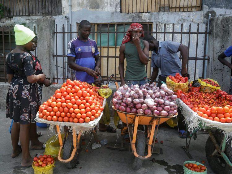 Le Projet de développement des chaînes de valeur agricoles, mis en œuvre depuis 2016 en Gambie, a permis d'augmenter la production animale.